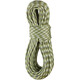 Edelrid Cobra Rope 10,3mm 50m oasis-snow